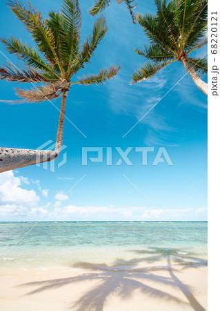 ハワイ・オアフ島のプナルウビーチ 68220121