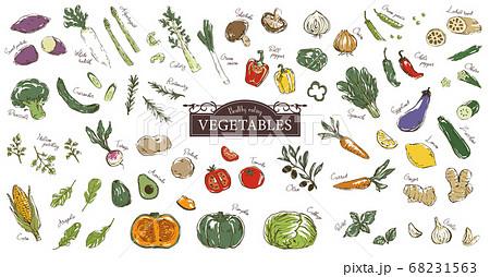 おしゃれでラフな野菜のスケッチイラストセット 68231563