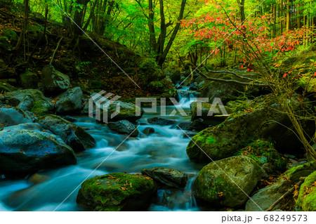 秋の渓流 68249573