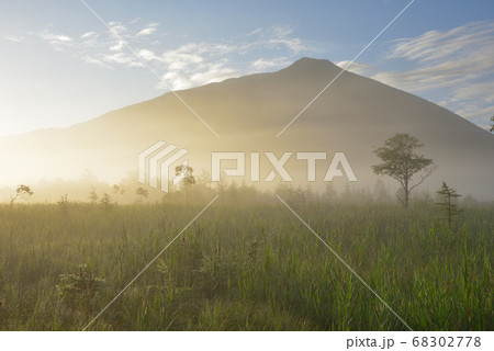 朝日に光る朝霧の漂う夏の戦場ヶ原と男体山 68302778