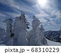 樹木に積った雪と壮大な景色 68310229