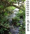 静岡 柿田川公園 湧き水 写真 68310850