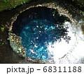 静岡 柿田川公園 湧き水 写真 68311188