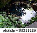 静岡 柿田川公園 湧き水 写真 68311189