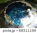 静岡 柿田川公園 湧き水 写真 68311190