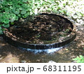 静岡 柿田川公園 湧き水 写真 68311195