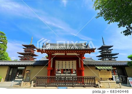 【奈良県】晴天下の薬師寺(東塔と西塔) 68340446