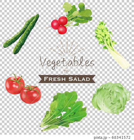 蔬菜套裝沙拉,水彩風格 68341572