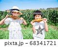 トウモロコシ畑で焼とうもろこしを食べる子供 68341721