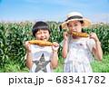 トウモロコシ畑で焼とうもろこしを食べる子供 68341782