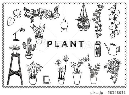 観葉植物や自然のシンプルな手描きイラストのイラスト素材