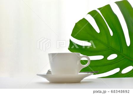 窓際に置いたホットコーヒーとモンステラの葉 68348692