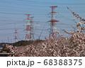 電力を運ぶための電線および鉄塔(送電線) さくら 68388375