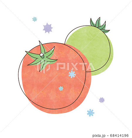 オレンジ色と緑色のトマトとウィルス 68414196