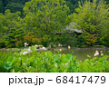 ハスの花咲く白水阿弥陀堂 68417479