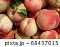 採れたて新鮮な桃 クローズアップ 68437613