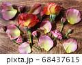 木のボードに並んだ花 背景 68437615