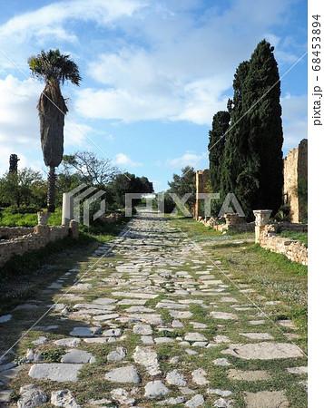 世界遺産カルタゴ遺跡のローマ人住居跡 68453894