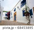 カルタゴ海岸の町、シディ・ブ・サイドの白壁の家 68453895