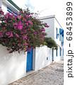カルタゴ海岸の町、シディ・ブ・サイドの白壁の家 68453899