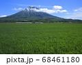 北海道倶知安町の風渡る麦畑と羊蹄山 68461180