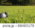 夏の太陽の陽をあびる公園の草 68463179