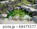 日本一の湧出量を誇る「草津温泉」 標高1200mに広がる山の中の温泉 68475577