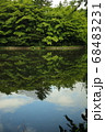 軽井沢の雲場池 68483231