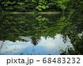 軽井沢の雲場池 68483232