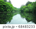 軽井沢の雲場池 68483233