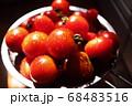 新鮮なトマト 68483516