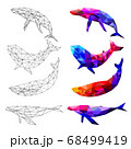 Set of Whale polygon geometric. Vector illustration. 68499419