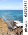 ハワイのハロナ潮吹き岩 偶然虹がかかった瞬間 展望台からの眺め 68539682
