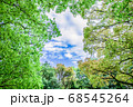 新緑 エコイメージ 68545264