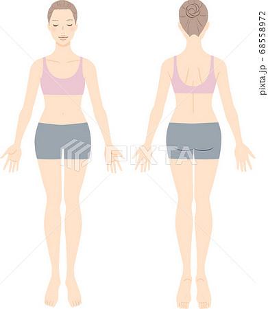 美容のコンセプトのための女性の全身図 前と後ろ 68558972