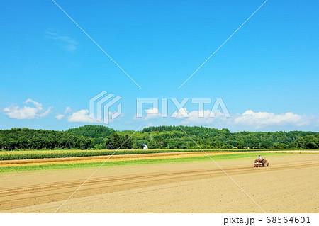 北海道 青空と畑の風景 68564601