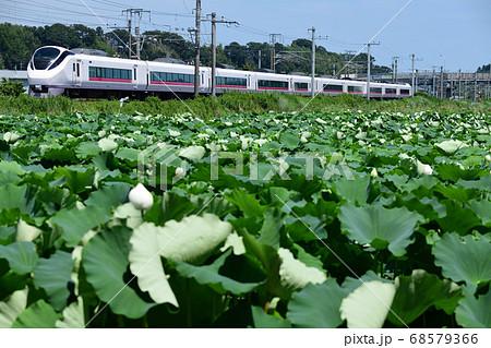 蓮田と常磐線特急E653系特急電車 68579366