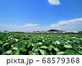 蓮田と常磐線特急E653系特急電車 68579368