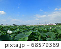 蓮田と常磐線特急E653系特急電車 68579369