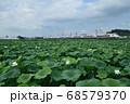 蓮田と常磐線特急E653系特急電車 68579370