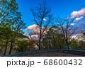 新緑と夕焼け雲、宝塚北公園 68600432