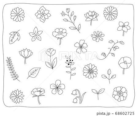 手書きの花や葉のイラストのセット 植物 おしゃれ かわいい 素材 自然のイラスト素材