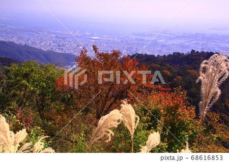 六甲山から見た神戸市内の展望(神戸市) 68616853
