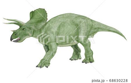 トリケラトプス 白亜紀後期の角竜類で雑食性。三つの角を持つ。 68630228