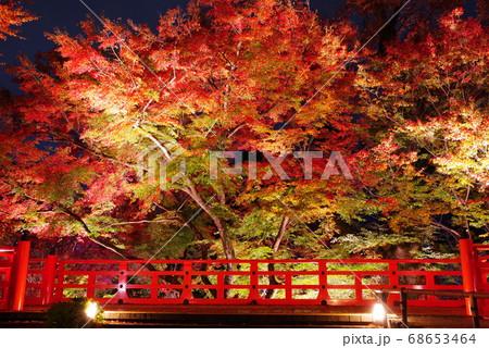 秋の京都・北野天満宮の紅葉ライトアップ 68653464