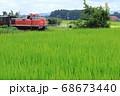 7月の田園風景の緑とディーゼル機関車 68673440