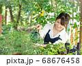 ガーデニングをする若い女性 撮影協力:三富今昔村 68676458