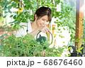 ガーデニングをする若い女性 撮影協力:三富今昔村 68676460