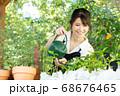 ガーデニングをする若い女性 撮影協力:三富今昔村 68676465