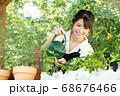 ガーデニングをする若い女性 撮影協力:三富今昔村 68676466